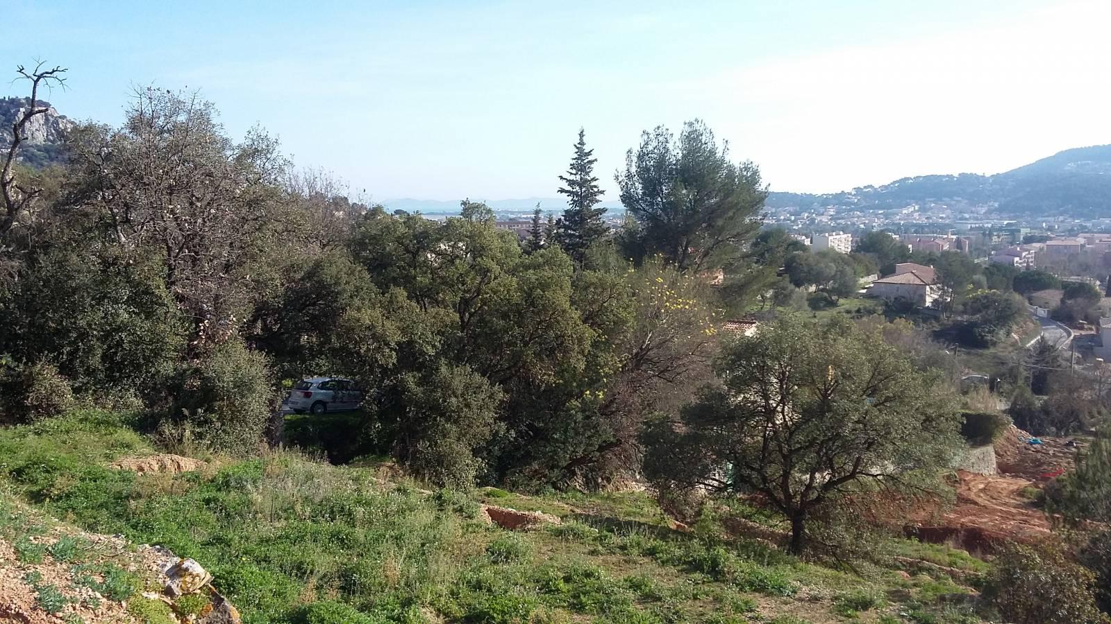 Terrain de 1200 m hyeres construction de maisons for Constructeur maison toulon
